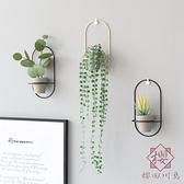創意個性墻面壁掛仿真綠植壁飾花盆花藝家居【櫻田川島】