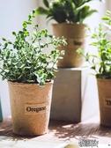 仿真植物假植物綠植室內外裝飾小清新盆栽小綠蘿盆栽仿真花草植物 街頭布衣