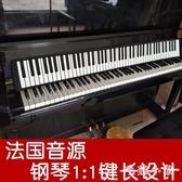 便攜式手卷鋼琴88鍵盤加厚專業版成人折疊桌面軟電子女初學者練習電子琴LXY7672『毛菇小象』