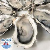 微光日燿 韓國半殼生蠔 12顆/包 (非生食級)