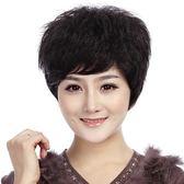 假髮(短髮)真髮絲-熟齡自然蓬鬆逼真女假髮2色73ek24[時尚巴黎]