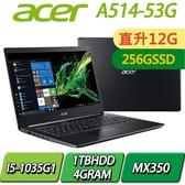 【12G記憶體升級版+256SSD】A514-53G-59JK/黑/I5-1035G1/12G/256SSD+1TBHDD/MX350/14