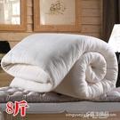 棉被 星月家紡 廠商 單人雙人8斤棉被 保暖厚棉絮冬被棉被 YYJ【快速出貨】
