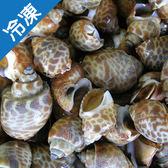 【野生Q彈】印度活凍象牙鳳螺1包(450g±5%/包)【愛買冷凍】