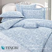 天絲床包兩用被四件式 加大6x6.2尺卡洛兒 100%頂級天絲 萊賽爾 附正天絲吊牌 BEST寢飾