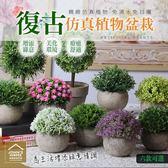 復古仿真植物盆栽 居家裝飾樹球仿針花 客廳塑膠花盆擺件 室內假花盆景【ZF0201】《約翰家庭百貨