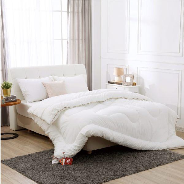 棉被 6X7雙人 / 發熱纖維 / 超細纖維發熱被 雙人[鴻宇]台灣製