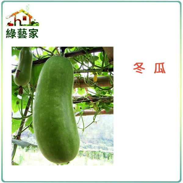 【綠藝家】G09.冬瓜 (青殼長冬瓜)種子20顆