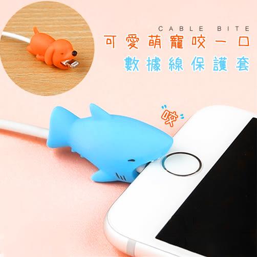 CABLE BITE韓國充電線寵物款保護套