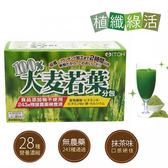 ITOH井藤-100%大麥若葉酵素青汁3gx30袋/盒 大樹