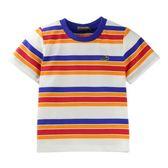『小鱷魚童裝』條紋T恤(04號~08號)561489