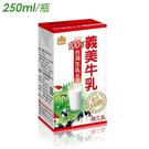 【請選宅配】台灣 義美牛乳 保久乳 生乳製 250mlx24/箱