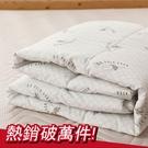 涼被 / 雙人【可水洗四季被】用於薄被套內可當涼被使用 戀家小舖台灣製ADS200
