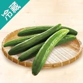 台灣優質小黃瓜1袋(600g±5%/袋)【愛買冷藏】