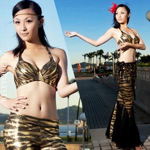 金色斑馬紋性感肚皮舞套裝.演出服飾.肚皮舞蹈服飾配件.中東肚皮舞.推薦哪裡買專賣店