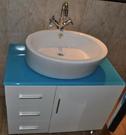 【麗室衛浴】英國 LIVING 檯上盆 2460 550*530*H150mm