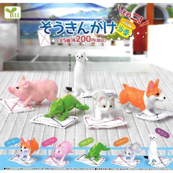 全套5款【日本正版】動物打掃值日生 P2 扭蛋 轉蛋 動物值日生 YELL - 826063