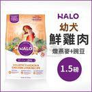 [寵樂子]《HALO嘿囉》幼犬燉食雞肉(燉燕麥+豌豆)1.5磅 / 狗飼料