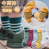 5雙裝 兒童襪子純棉韓版中筒襪男女童厚款棉襪