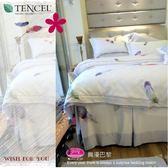 三件套【薄床包】6*7尺 *╮☆御芙專櫃『舞韻巴黎』紫/60s高觸感100%天絲棉/特大