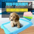狗廁所寵物狗狗用品泰迪狗狗廁所大號狗尿盆狗便盆小型犬比熊【全館免運】