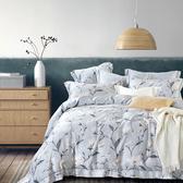 【Indian】100%純天絲雙人加大七件式床罩組-多款任選杏雨沾衣