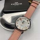 星晴錶業-COACH蔻馳女錶,編號CH00008,36mm銀錶殼,粉紅錶帶款