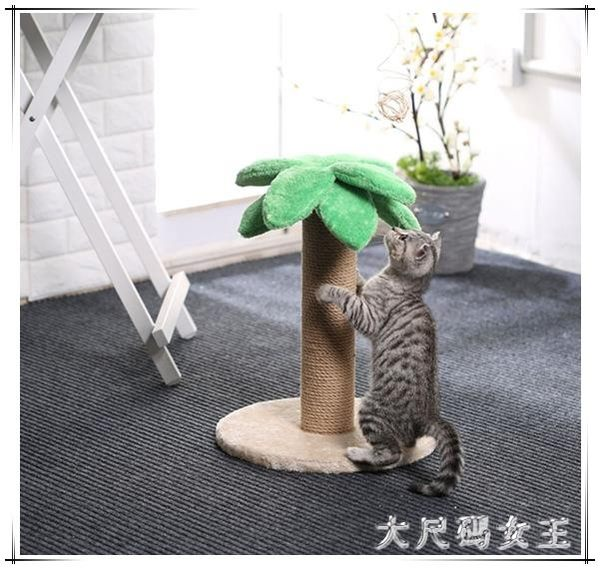 顏值擔當小型貓爬架貓抓柱劍麻貓抓板貓跳臺TY664【大尺碼女王】