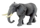 柯雷塔collectA 英國PROCON 動物系列 非洲大公象 TOYeGO 玩具e哥