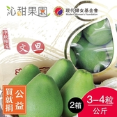 買就捐-沁甜果園SSN.頂級文旦小禮盒3-4粒裝/公斤(共2箱)﹍愛食網