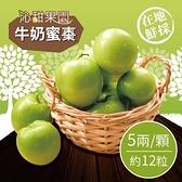 沁甜果園SSN.牛奶蜜棗禮盒(5兩/顆,約12粒)﹍愛食網