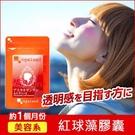 紅球藻(蝦紅素)膠囊 添加維他命E 吃的太陽傘 美麗佳人【 約1個月份】ogaland