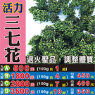 M1B35【活力の三七花】►均價【450元/組/100g】►共(4組/400g)║營養補給