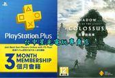 【PS4 遊戲下載卡&三個月】 汪達與巨像 中文版 數位版&PSN PLUS 3個月會籍【台中星光電玩】