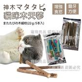 純天然木天蓼棒 貓主子最愛 玩耍磨牙去毛球 日本樂天拍賣同步販售 貓草球 【Miss.Sugar】【G00076】
