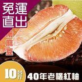 普明園 嚴選台南麻豆40年老欉紅柚(10台斤/箱) E09400012【免運直出】