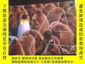 二手書博民逛書店Advanced罕見Level Mathematics Statistics 1 高等數學統計1Y354 如圖