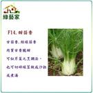 【綠藝家】F14.甜茴香種子200顆...