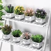 北歐仿真植物綠植小盆栽ins室內家居擺件客廳辦公桌裝飾假花創意 町目家