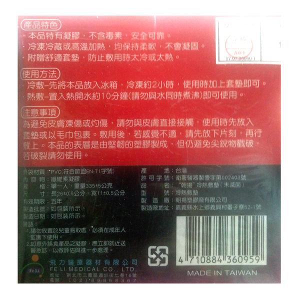 *醫材字號*【Fe Li 飛力醫療】冷熱兩用敷墊(附贈布套)