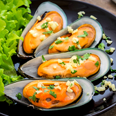 ㊣盅龐水產 ◇紐西蘭半殼淡菜M號◇26-30顆 貽貝 孔雀蛤 800g±5%/盒 歡迎團購