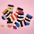 貓咪刺繡滾花邊長襪 獨具衣格