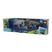 Wild Quest 海洋生物模型組 玩具反斗城