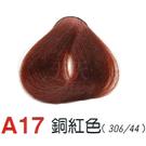 【燙後染髮】奇靈鳥 二代染髮劑 A17-銅紅色 [66215]