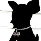 【Fulgor Jewel】不鏽鋼寵物項...