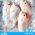 【台北魚市】  赤宗  300g±10%...