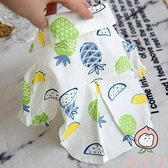 寵物貓咪雪納瑞比熊小型犬泰迪狗狗衣服春夏裝春裝薄款襯衫襯衣~桃可可服飾~