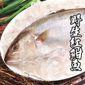 【下殺5折】野生紅魽魚*1隻組(800-1000g/隻)