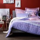 HOLA 苡拉天絲磨毛床包兩用被組 厚款 雙人