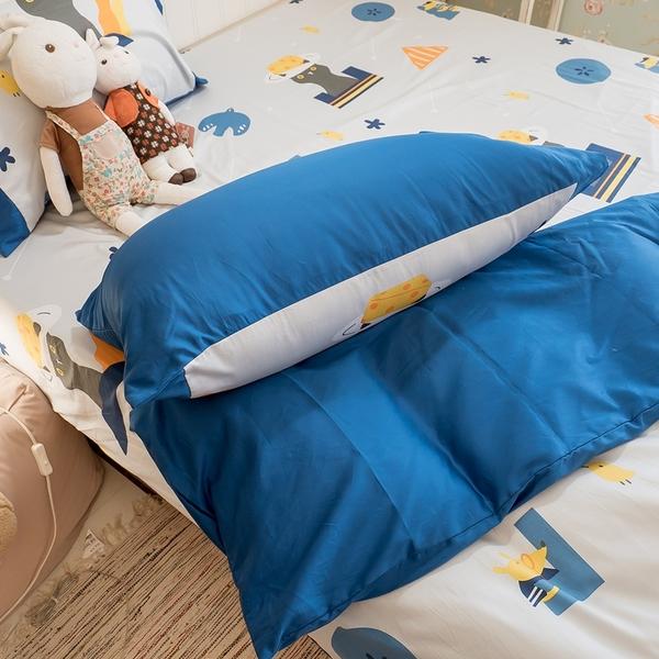 躲貓貓  D1雙人床包三件組 100%精梳棉(60支) 台灣製 棉床本舖